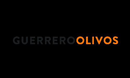 Aliado ALADYR: Guerrero